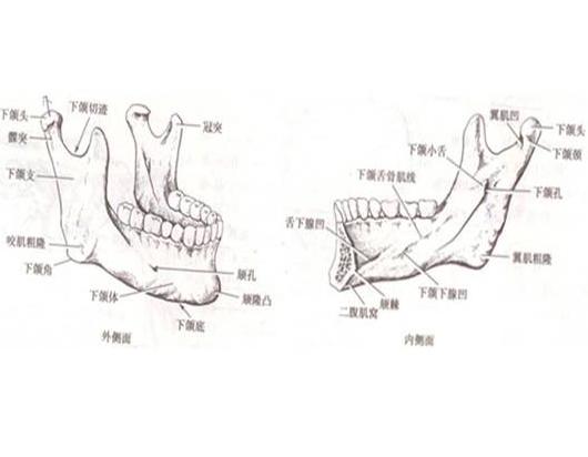 下颌角整形手术安全不安全